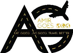 Amir Goes